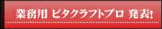 業務用ビタクラフトプロ発表!